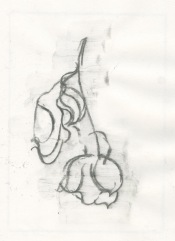 Flower sketch #2